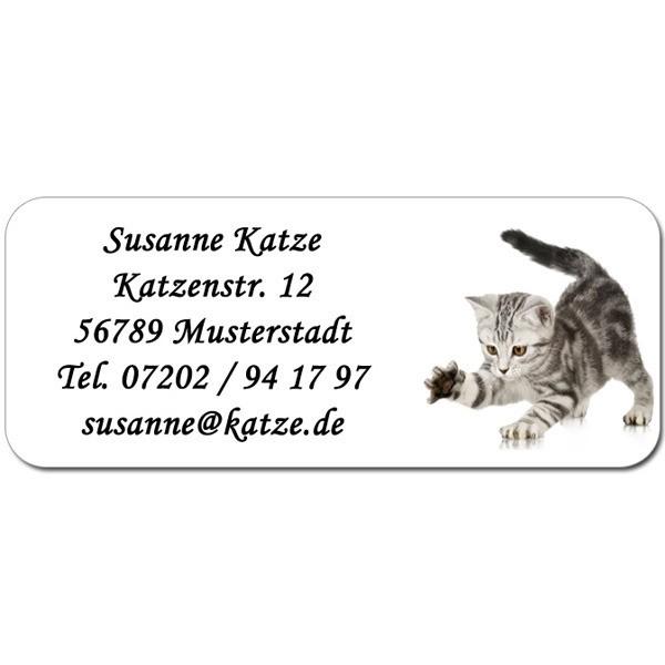 Adress-Etiketten Katzenbaby 160 Stück