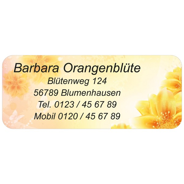 Adress-Etiketten Orange 160 Stück
