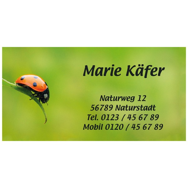 Visitenkarten Marienkäfer 54 Stück